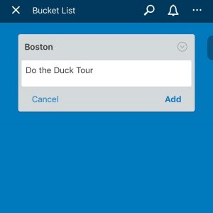 examples of bucket list goals